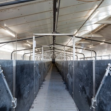 Creagh Concrete 3000mm Pig & Sheep Slats