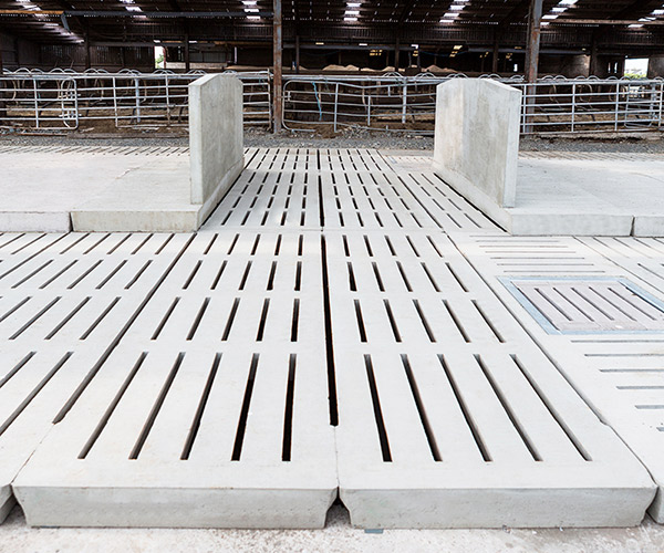 Creagh Concrete 2200mm Cattle Single 6 Rib Slats
