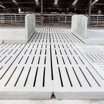 Creagh Concrete 3950mm Head to Head Cow Cubicle