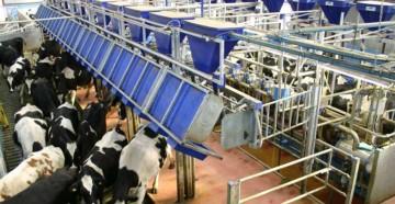Dairymaster Swiftflo Fast Exit Parlour