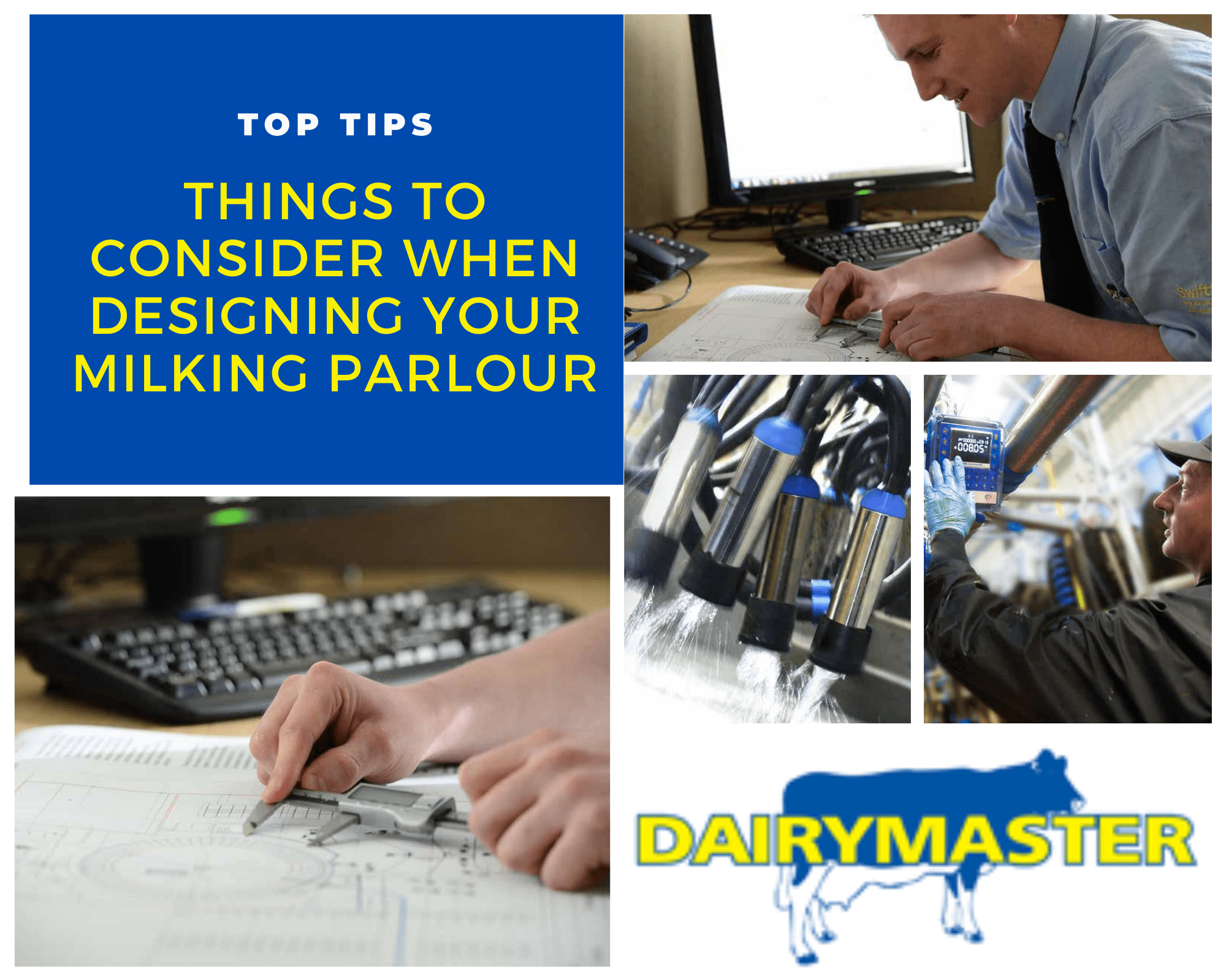 Things to consider when designing your milking parlour
