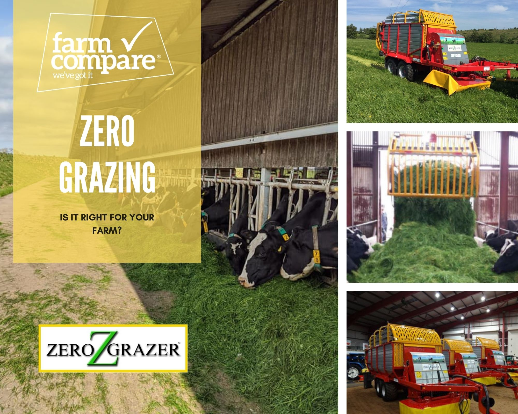 Growing interest in zero–grazing