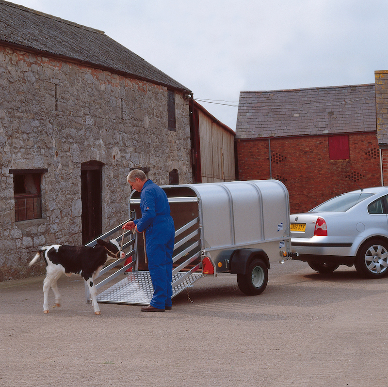 Ifor Williams P7e 7x4 H/R Livestock Trailer
