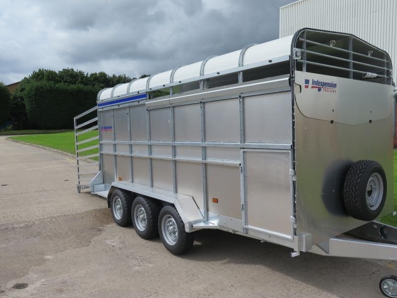 Indespension 14ft x 6ft  Large Tri Axle Livestock Trailer