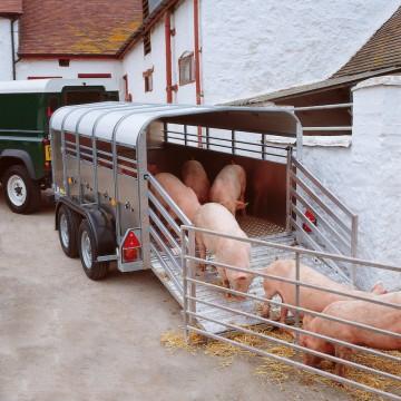 Ifor Williams TA5 10x6 H/R Livestock Trailer